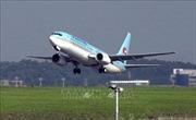 Hàn Quốc xác nhận tiếp viên hãng hàng không Korean Air bị nhiễm virus Corona