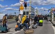 Các nghị sĩ châu Âu kêu gọi khôi phục tự do đi lại xuyên biên giới cho người dân