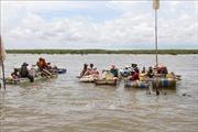Rừng phòng hộ ven biển mới trồng ở Sóc Trăng bị ảnh hưởng do khai thác nghêu, sò huyết giống