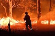 Australia nỗ lực sơ tán hàng nghìn người bị mắc kẹt do cháy rừng