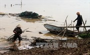 Nghiêm cấm người dân vớt củi trên sông, suối trong mùa mưa lũ