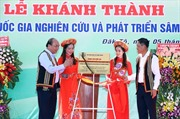 Thủ tướng Nguyễn Xuân Phúc: Sâm Ngọc Linh là quốc bảo của Việt Nam