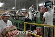 Rơi vào chu kỳ suy thoái kinh tế, tỉ lệ thất nghiệp tại Mỹ Latinh gia tăng