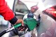 Giá dầu thế giới tăng do xuất khẩu dầu của Iran sụt giảm