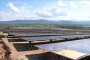 Nhà máy điện mặt trời có công suất 35 MW đầu tiên tại Việt Nam chính thức hoạt động