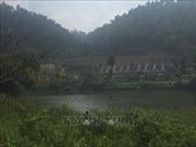 Bắt đầu thanh tra công tác quản lý, sử dụng đất rừng Sóc Sơn