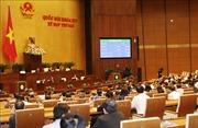 Thủ tướng Chính phủ phê duyệt Kế hoạch thực hiện CPTPP