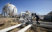 Kỳ vọng OPEC cắt giảm sản lượng hỗ trợ đà tăng của giá dầu châu Á