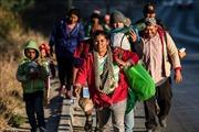 Thêm nhiều nước rút khỏi hiệp ước toàn cầu về di cư của LHQ