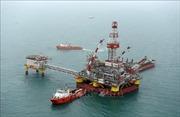 Giá dầu thế giới phục hồi từ mức thấp trong nhiều tháng