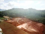 Mở đợt trấn áp tội phạm san ủi đất rừng tại huyện Lạc Dương, Lâm Đồng