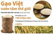 Gạo Việt vươn tầm thế giới