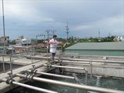 Hầu hết các cụm công nghiệp ở Thái Bình chưa có khu xử lý nước, chất thải tập trung