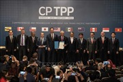 CPTPP: Thách thức và động lực cải cách thể chế