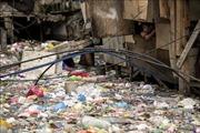 Liên hợp quốc kêu gọi thế giới khẩn trương khắc phục ô nhiễm hóa chất