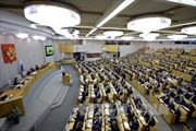 Thượng viện Nga thông qua dự luật chống tin giả và xúc phạm biểu tượng nhà nước