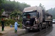 Tăng cường kiểm soát trên các tuyến Quốc lộ để ngăn ngừa dịch tả lợn châu Phi