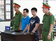 Ninh Thuận: Hai anh em giết cha ruột lĩnh án tù