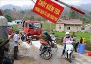 Thành lập các tổ công tác di động phòng, chống dịch tả lợn Châu phi
