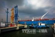 Nghiên cứu các vị trí phù hợp để thay thế Bến cảng xăng dầu B12 ở Quảng Ninh