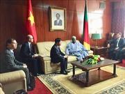 Đặc phái viên Thủ tướng, Thứ trưởng Ngoại giao Nguyễn Quốc Cường làm việc tại Cameroon