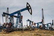 Giá dầu Brent Biển Bắc đảo chiều đi lên