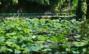 50 năm thực hiện Di chúc Bác Hồ: Kim Liên phấn đấu về đích nông thôn mới kiểu mẫu