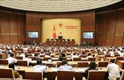 Kỳ họp thứ 7, Quốc hội khóa XIV: Cho ý kiến dự án Luật Phòng, chống tác hại của rượu, bia
