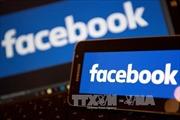 Microsoft Corp và Facebook Inc cam kết tăng cường an ninh mạng tại Canada