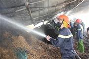 Cháy rụi xưởng chế biến chứa hơn 400 tấn lạc ở Hà Tĩnh