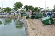 Mỗi ngày, hàng tấn cá chết tại hồ Thạc Gián, Đà Nẵng