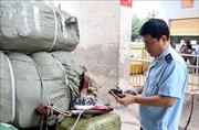 Buôn lậu, gian lận thương mại ngày càng tinh vi, manh động
