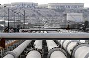 Giá dầu thế giới đi ngược chiều nhau