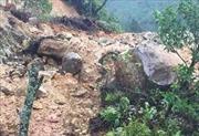 Sạt lở núi đá, 3 người may mắn thoát chết