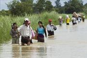 Lũ lụt hoành hành, hàng chục nghìn người ở Myanmar phải sơ tán