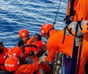 Tàu Ocean Viking cứu thêm 81 người ở ngoài khơi Libya