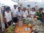 Hiệu quả từ việc kết nối cung - cầu nông sản, thực phẩm an toàn