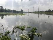 Mưa lớn kéo dài 3 ngày tại Nghệ An, một số tai nạn đáng tiếc đã xảy ra