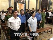 Hứa Thị Phấn thâu tóm, chỉ đạo rút ruột hơn 1.338 tỷ đồng của Ngân hàng Đại Tín