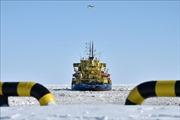 Động cơ tàu phá băng Nga phát tín hiệu cấp cứu đã hoạt động trở lại