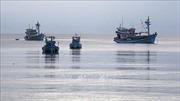 Việt Nam thực hiện hiệu quả các khuyến nghị của Ủy ban châu Âu về IUU