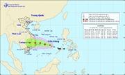 Áp thấp nhiệt đới mạnh lên thành bão - cơn bão số 5
