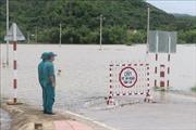 Lũ khẩn cấp trên các sông từ Quảng Ngãi đến Phú Yên