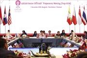 Việt Nam nỗ lực duy trì đà tiến triển của ASEAN, thúc đẩy và tăng cường thống nhất nội khối