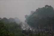 Không khí ở Hà Nội sáng 12/11 ở mức cao nhất trong thang bậc ô nhiễm