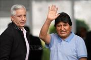 Cựu Tổng thống Bolivia Evo Morales đã tới Mexico tị nạn chính trị