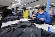 Đơn hàng của nhiều doanh nghiệp dệt may sụt giảm