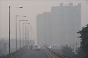 Chất lượng không khí của New Delhi xấu nghiêm trọng do khói bụi độc hại bao phủ