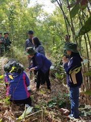 75 năm QĐND Việt Nam: Tiếng gọi từ quá khứ