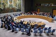 Việt Nam chủ trì phiên họp của HĐBA LHQ thảo luận về tình hình Yemen